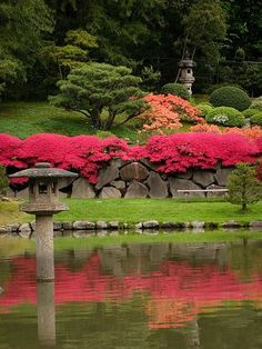 Japanese Garden - landscape with two stone lanterns