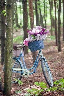 Purple flowers blue bicycle