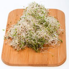 Raw alfalfa sprouts are tasty, but could be dangerous to eat when you're pregnant. 9 foods to avoid when you're eating for two: http://www.womenshealthmag.com/health/foods-to-avoid-during-pregnancy