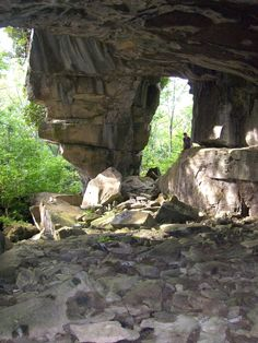 Greig's Caves on the Bruce Peninsula in Southern Ontario.  I've been there and it is awesome.