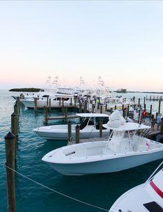 Gentleman...start your engines!  Wahoo Smackdown 2016, Bimini, Bahamas Alice Town, Bahamas Vacation, Big Game, Water Sports, Gentleman, Island, Adventure, Building, Travel