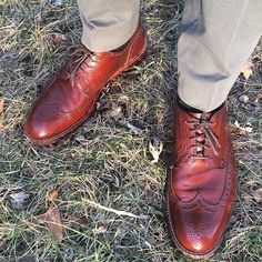 tichoblancoshoes 🌻🌻🌻🌻🌻 #Alden from @epaulet #epaulet #aldenarmy #aldenshoes #alpinegrain #wingtips #shoes #shoeporn #shoegazing #shoesoftheday #mensshoes #goodyearwelt #jcrew #chinos #suit #suits #menswear #mensfashion #mensstyle #style #fashion #outfit #outfitoftheday #styleforum #ootd #wiwt #sotd 2017/02/09 08:00:18