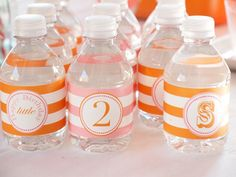 Mini Water Bottle Labels created by @Natalie Jost Jost Lesnefsky for her client's Tiny Two Birthday Party #kidparty #partydetails #waterbottlelabel #partytheme