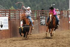 Team roping I can not wait to do this together!! One of my BIGGEST dreams!!!*