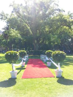 Queens gardens wedding ceremony in perth. Wonderful decor set up by mr pot plants and glorious gardens.