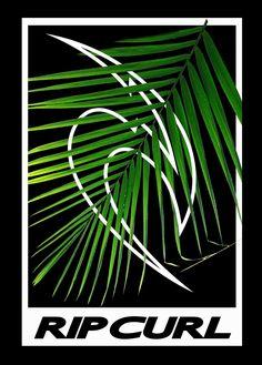 Surf Design, Tee Design, Logo Design, Surf Logo, Beach Logo, Skate Shirts, Doodle Quotes, Artwork Images, Surfs Up