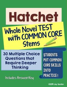 Challenge your students to use those higher-level thinking skills required by the Common Core on this carefully-prepared assessment for Gary Paulsen's Hatchet.