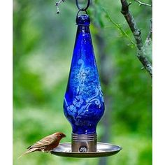cobalt blue bird feeder