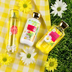 Love and sunshine! I own this and its one of the best! It's a fresh and playful, happy scent that reminds me of sunshine!