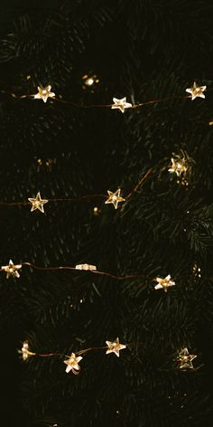 Christmas Phone Wallpaper, New Year Wallpaper, Winter Wallpaper, Wallpaper For Your Phone, Wallpaper Iphone Cute, Black Wallpaper, Christmas Mood, Xmas, Christmas Wonderland