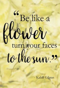 """Flower Godmother's Favorite Floral Quotes: """"Be like flower, turn your faces to the sun."""" – Kahlil Gibran For more inspirational floral quotes, downloa… – Quotation Mark Sun Quotes, Nature Quotes, Happy Quotes, Words Quotes, Best Quotes, Flower Quotes Inspirational, Floral Quotes, Flower Quotes Life, Kahlil Gibran"""