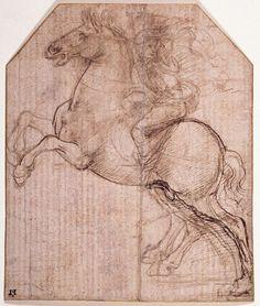 da vinci horse art   Horse Sketch DaVinci No.2 Draft Horse By Colorado Artist Jennifer ...