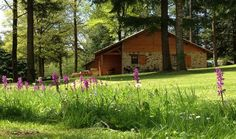 Natuurhuisje 28240 - vakantiehuis in Cussac