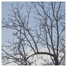Dry Tree Branches Fabric