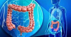 depurare colon perdere 10 chili