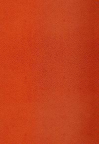 5005852 Shagreen Chinese Orange by F Schumacher