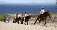Information about horseriging and rural tourism in Andalucia, for those interested in this region of Southern Spain. Hiring Horses in Andaluicia.