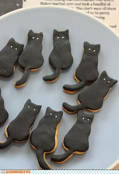 cookies  cat