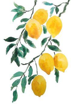 yellow lemon 2018 Poster by colorandcolor Lemon Watercolor, Watercolor Flowers, Watercolor Ideas, Tattoo Watercolor, Watercolor Animals, Lemon Painting, Watercolor Background, Watercolor Landscape, Abstract Watercolor