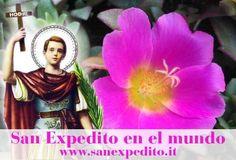 El amor todo lo puede  http://on.fb.me/1dsfaYI ¡Feliz domingo a todos con la protección de San Expedito! pic.twitter.com/UqNoB4vYjd