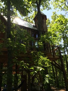 Retreat in Dancing Trees Treehouse at The Hermitage message to set a date.