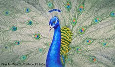 How to Draw a Peacock With Color Pencils - Drawing Feathers and Birds #art #drawing #FineArtTips #peacock #colors #animals #artistleonardo #LeonardoPereznieto #tutorial Take a look to my book here: http://www.artistleonardo.com/#!ebooks-english/cswd