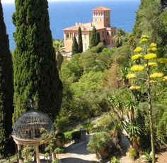 Giardini botanici di Villa Hanbury-Ventimiglia,Liguria-North Italy