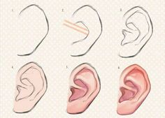 como pintar orejas