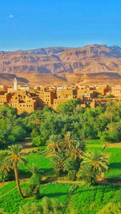 Todra Valley, Morocco