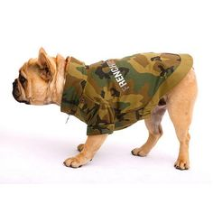 Ranger, Pet Boutique, Cute Faces, Camo, Outdoor Blanket, Pets, French Kiss, Animals, French Bulldogs