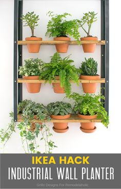 hyllis ikea hack for an industrial wall planter / Grillo Designs www.grillo-designs.com