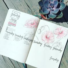 """62 Likes, 8 Comments - @mylifeplan_n on Instagram: """"A new #weekly with some new details. I added some #dailytracking into my #weeklyspread and ofcourse…"""""""
