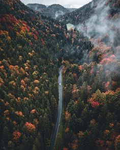 """2,174 Likes, 82 Comments - Janni Laakso (@jannilaakso) on Instagram: """"Driving through autumn """""""