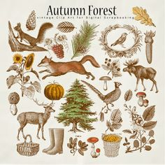 Freebies Autumn Forest