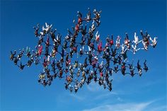 OTTAWA – Falling at speeds of up to 220 mph, a group of 138 skydivers shattered the vertical skydiving world record as they flew heads-down in a massive snowflake formation in Illinois. Alien Worlds, Base Jumping, Paragliding, Skydiving, World Records, Extreme Sports, Big Picture, Ciel, Snowflakes