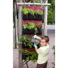 gardening with kids: Pocket Planter Vertical Gardening Kit, K-12 (All 4 Teacher Guides)