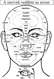 JUST A MAKEUP: Mutasd a pattanást, megmondják mi bajod Wiccan Spell Book, Wiccan Spells, Health Promotion, Acupuncture, Biology, Massage, Health Fitness, Makeup, Anxiety