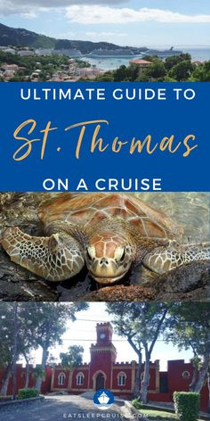 Are you planning a cruise vacation that stops in St. Thomas? If so, you will want to check out our guide to the best things to do in St. Thomas on a cruise. There are many excursions available in this cruise port, from beaches to waterfalls and sampling the food at local restaurants. From visiting Corl World, take an island tour, and so much more. There's opportunities for awesome photo ops as well as shopping too. Check out our blog post for all the best things to do in St. Thomas!