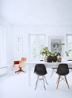 Bright white room with a lovely group of plants. Fresh!