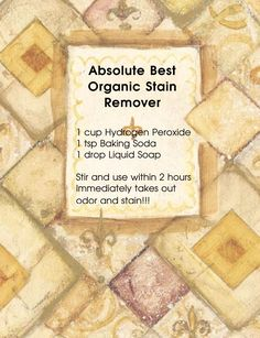 Never have to buy commercial stain remover again.... Pet or Human!