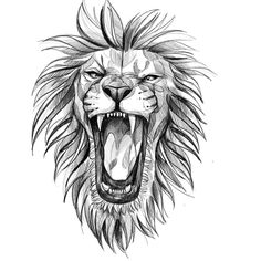 Learn more about tattoo styles and the work of Wescley - wescleyf (Tattoo artist). Lion Forearm Tattoos, Lion Head Tattoos, Crow Tattoos, Phoenix Tattoos, Ear Tattoos, Small Tattoos, Dragon Tattoo Drawing, Lion Drawing, Family Tattoo Designs
