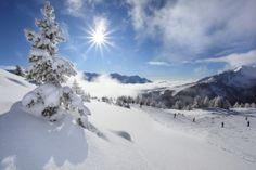 LA TORRETTA SKI & WELLNESS HOTEL: Snow & Sun al Passo del Tonale -  Hotel La Torrett...