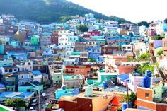 18 Fun Things Every Traveller Must Do In And Around Busan