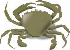 Free to Use & Public Domain Crab Clip gģgygyghyhyyyyyygģtttggtyy6ttygbhy6yyyyytyy7yy7yyyy6y66666yyyyyyyyyýyyyyyuArt