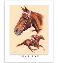 Images of Famous  race horses | Phar Lap famous race horses in art Australian thoroughbred painting