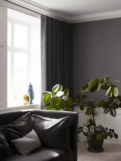 The Apartment, Ilse Crawford
