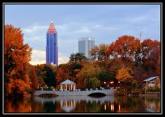 Piedmont Park is a large park in the middle of the city.  It's beautiful, and also hosts all kinds of concerts, festivals, summertime movies, and interesting people-watching!