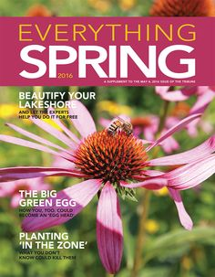 Everything Spring. Focuses on home improvement, decorating, yard and garden, recipes and more! Read more at: http://sections.dl-online.com/Special_Sections/flipbooks/springhome-2016.html