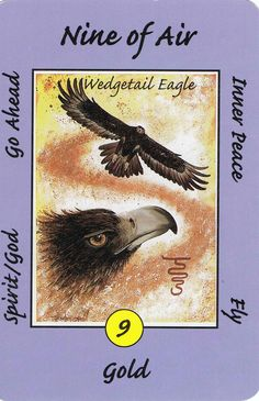 9. Air (Eagle) Australian Animal Tarot Deck.  Go ahead! You will succeed as Spirit is with you. Peace within.