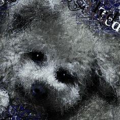 以前にpickのお友達犬をお絵描きした時、もう一枚描いた絵ですこんな感じにコラージュした作品はお絵描きだから出来ますね、記念の作品になればイイです。  今日は僕のfacebookのお友達の歌を紹介します、FBでミュージシャンやアーチストや有名スターの方々と僕の絵の繋がりで、たくさんの友達が出来ました、その中の何人かの歌を紹介していきます。 David So Ft. Toestah - Used to Be 歌の上手いコメディアン http://youtu.be/BOcPN59CVJ8  tumblrの僕のブログでも見れます。 http://nodasanta.tumblr.com/